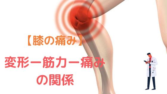 【変形性膝関節症】変形と痛みと筋力の関係|全ての元凶は痛み